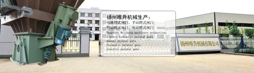 Palatal gate